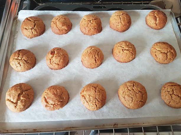10secondapricotandcoconutcookies-p05